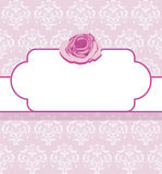 Ornamental frame with pink rose Stock Images