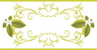 Ornamental frame with white flowers. Illustration Royalty Free Stock Photography