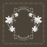 Ornamental frame with white flowers. On the dark brown background. Illustration Stock Photography