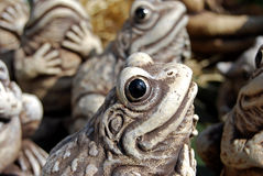 Ornamental frog Royalty Free Stock Photo