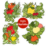 Ornamental fruits and vegetables compositions set Royalty Free Stock Photos