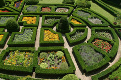 Ornamental garden Royalty Free Stock Photography