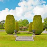 Ornamental garden Stock Image