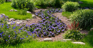 Ornamental garden. The beatiful ornamental garden: flowers and stones Royalty Free Stock Photography