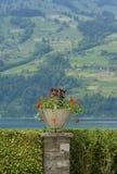 Ornamental Garden Stock Photo