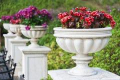 Ornamental Garden Royalty Free Stock Image