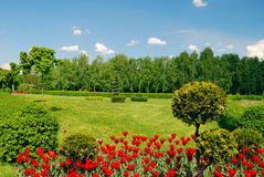 Ornamental garden with green lawn Royalty Free Stock Photography
