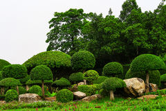 Ornamental garden, a perfect place. For a holiday break stock images