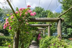Ornamental garden with pergola and rosa Royalty Free Stock Images