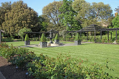 Ornamental garden. Photo of an ornamental garden showing large potted box trees and arbor frame structure alogside rose bed Stock Images