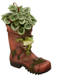 Ornamental Garden wellington boot Royalty Free Stock Images
