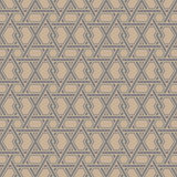 Ornamental Geometric Seamless Pattern Royalty Free Stock Photos