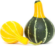 Ornamental gourd Royalty Free Stock Images