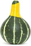 Ornamental gourd Royalty Free Stock Photos