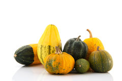 Ornamental gourds Royalty Free Stock Image