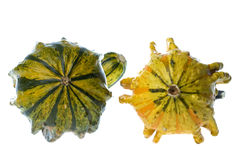 Ornamental gourds Royalty Free Stock Photography