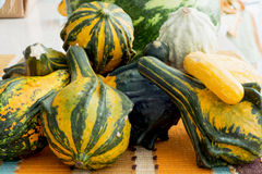 Ornamental gourds on the kitchen table Royalty Free Stock Images