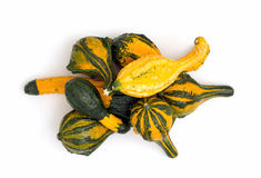 Ornamental gourds in a pile Royalty Free Stock Photography