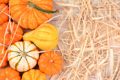 Ornamental Gourds WhiteTable Straw Royalty Free Stock Image