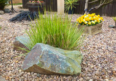 Ornamental grass set in rockery Royalty Free Stock Photography
