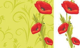 Ornamental green background with red poppies Royalty Free Stock Image