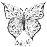 Ornamental hand drawn sketch of Butterfly abstract. vector illustration with ornament, isolated Stock Image