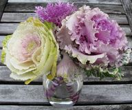Ornamental kale flowers in a glass vase. Stock Photos