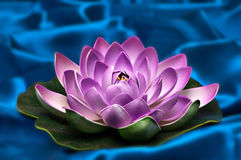 Ornamental lotus background Stock Photo
