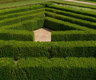 Ornamental maze Royalty Free Stock Photo