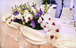 Ornamental orchids for wedding Stock Image
