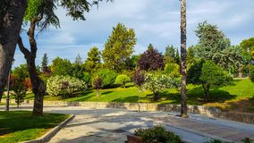 Ornamental park with trees grass and bushes. Pavement and brick floor and blue sky with some clouds. Colourful with many species. Topiary hedges and bushes royalty free stock photos