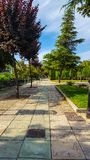 Ornamental park with trees grass and bushes. Pavement and brick floor and blue sky with some clouds. Colourful with many species. Topiary hedges and bushes stock photos