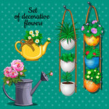 Ornamental plants set, pots, watering can and vase Royalty Free Stock Photo