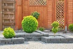 Ornamental Plants in Yard Stock Photography