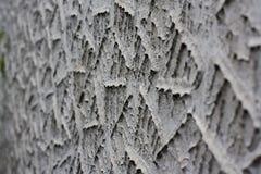 Ornamental plaster, Calcio Vecchio Royalty Free Stock Photo