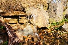 Ornamental pond in garden Stock Photography
