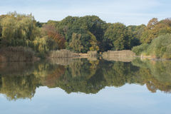 The Ornamental Pond, Southampton Common in Autumn. A view across the Ornamental Pond, Southampton Common in Autumn, showing reflections Royalty Free Stock Photography