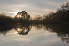 The Ornamental Pond in the early morning sunshine royalty free stock photos