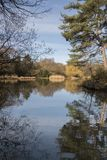 The  Ornamental Pond,  Southampton Common on a sunny day in Spring Royalty Free Stock Photos