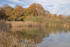 The Ornamental Pond, on Southampton Common Stock Images