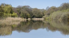 The Ornamental Pond, Southampton Common Stock Photography