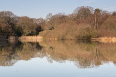 The Ornamental Pond on Southampton Common in winter royalty free stock photo