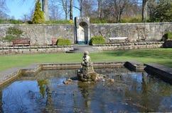 Ornamental Pond Stock Photos