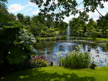 Ornamental pond and water fountain in a garden Royalty Free Stock Photos
