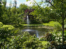 Ornamental pond and water fountain in a garden Royalty Free Stock Images
