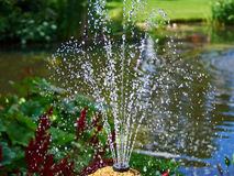 Ornamental pond and water fountain in a garden Royalty Free Stock Photo