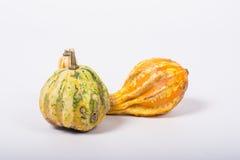 Ornamental pumpkin Royalty Free Stock Images