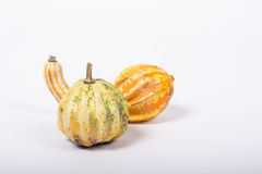 Ornamental pumpkin Royalty Free Stock Photography