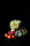 Ornamental pumpkin, red berries and Flowering Cabbage royalty free stock images