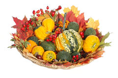 Ornamental pumpkins and autumnal decorations Stock Photo